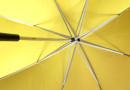 Wie wird das Wetter? Fragen Sie Ihren Regenschirm!